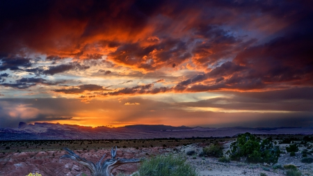 Gorgeous Painted Desert Sky
