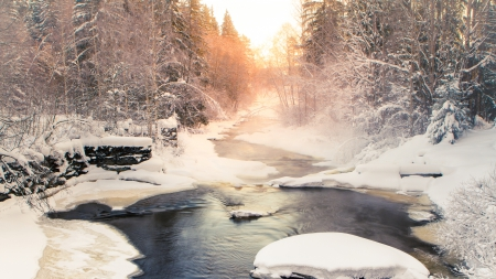 mist from a river in winter - forest, river, winter, mist