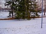 Scenic Winter View