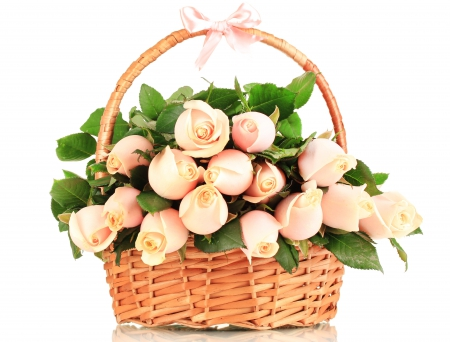 Basket of pink roses - with love, basket, beauty, pink ribbon, roses, buds, pink roses