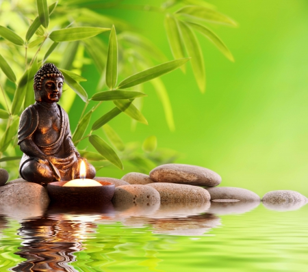 Mood For Peace Feng Shui Wallpapers And Images Desktop Nexus Groups