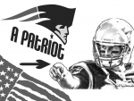 Tom Brady - 5th Superbowl Win! - Art
