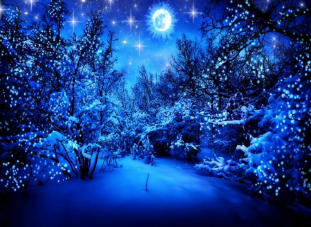 Image result for winter starry night