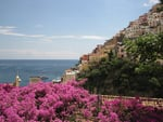 Amalfi in Bloom