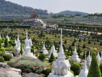 marvelous nong nooch gardens in thailand