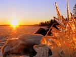 natural ice sculpture by a frozen lake