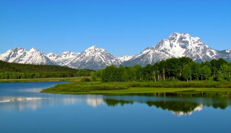 Grand Teton National Park, Wyoming - forest, grass, national, teton, park, trees, sky, lake, wyoming, snow, mountains, nature, grand, reflection, white, blue