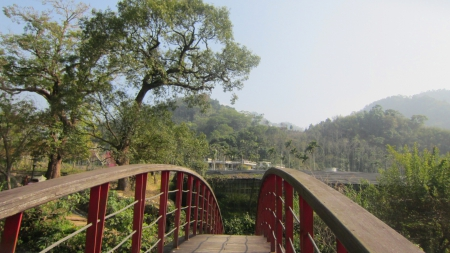 Bridge - red, tree, hiking, Bridge