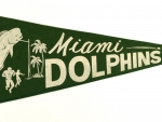 Miami Dolphins NFL football year 1966