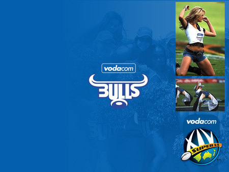 Bulls Rugby Sports Background Wallpapers On Desktop Nexus Image