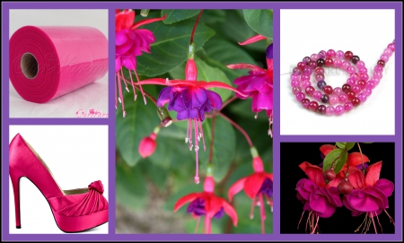 In Love with Fuchsia - people, flowers, pink, fuchsia, other, shoes