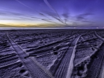 tire tracks on a purple beach at dusk hdr