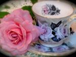 TEA & ROSE