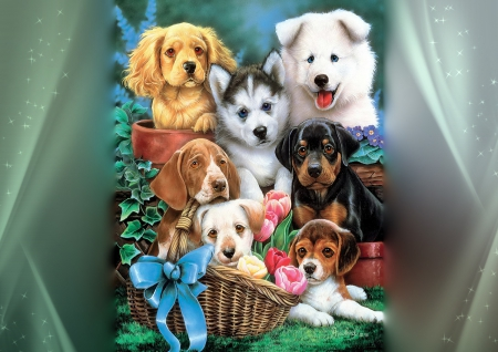 Cute friends - cozy, lovely, frame, pot, beautiful, adorable, sweet, cute, puppies, basket, photoshop, animals