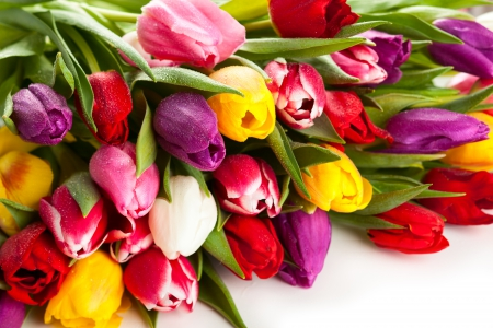 Tulips - with love, bouquet, flowers, nature, for you, tulip