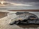 beautiful rock in a tidal pool on a beach