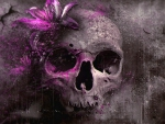 Grey Skull with Flower