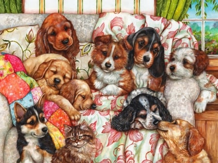 Before afternoon nap - beautiful, adorable, blanket, sweet, afternoon, puppies, lazy, painting, room, morning, friends, comfortable, art, cozy, window, nap, sleeping, cute, dogs