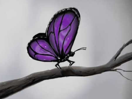 Purple Butterfly - Purple, Purple Butterfly, beautiful, butterflies, abstract, branch, Butterfly, sketch, butterfly, purple, drawing, painting, insect, purple butterfly, nature, insects
