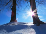 Winter Kissed in Sunbeams