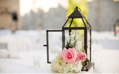 Romantic Lantern - candle, pretty, lovely, lantern, rose, beautiful, home decor, wedding, decor, softness, pink rose, photography, flowers