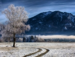 farm at the foot of bavarian mountains in winter