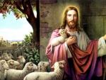 My sweet shepherd Jesus Christ