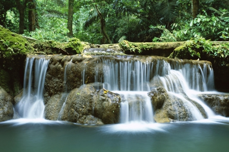 Waterfall in Thailand - rock, gray, trees, thailand, lake, limbs, water, waterfall, nature, white, falls