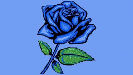 blue rose - other, blue, blue rose, rose