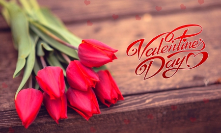 Happy Valentine's Day - valentines, valentines day, red, red tulips, red flower, happy valentines day, happy, red tulip, love, red flowers, flower, flowers, day, tulips, tulip