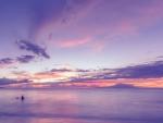 the wide wide pink ocean