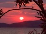 Nice Sunset No1 - 2014