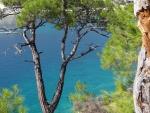Best 2014 islands