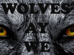 Wolves Ay We