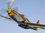 classic p-51 mustang