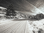 wonderful winter scene in monochrome