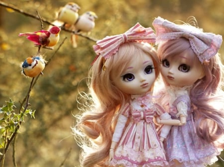 Cute Dolls Photography Abstract Background Wallpapers On Desktop