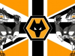 Wolves FC UK Wolf