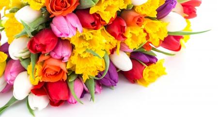 Spring flowers flowers nature background wallpapers on desktop spring flowers mightylinksfo