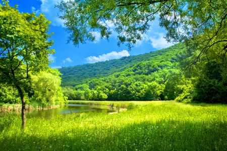 Green Landscape Grass Nature Background Wallpapers On Desktop