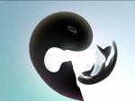 yin yang
