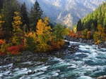 beautiful rapid flowing river in autumn