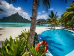 Swimming Pool at Resort Bora Bora