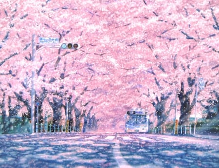 Sakura Street Other Anime Background Wallpapers On Desktop Nexus