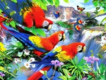 ★Tropical Birds in Forest★