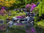 Water cascades in park