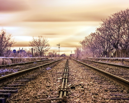 Parallel Railways - photography, color, railways, trees, sky