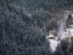 lodge in snowy black mountain forest