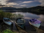 boats on a lake at dawn