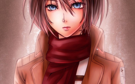 Mikasa Ackerman - mikasa ackerman, shingeki no kyojin, anime, attack on titan, anime girl